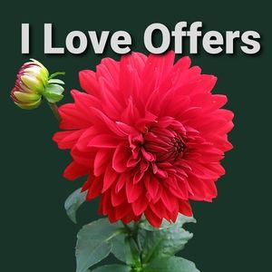 Other - ♥️I LOVE REASONABLE OFFERS